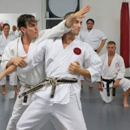 Image showing young men practicing shotokan karate method.