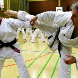 Image of A Strong and Confidence Kick By Master Towards the training girl.