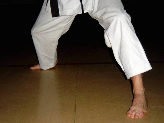 A Karate Trainer In Action.